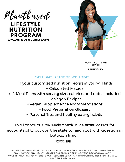 _Lifestyle Nutrition Program  Outline.pn