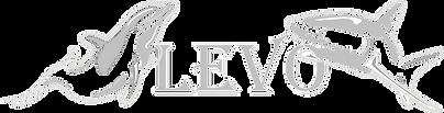 Levo Logo Silver Png No White.png