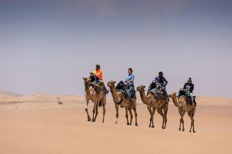 camelRides-960x600.jpg