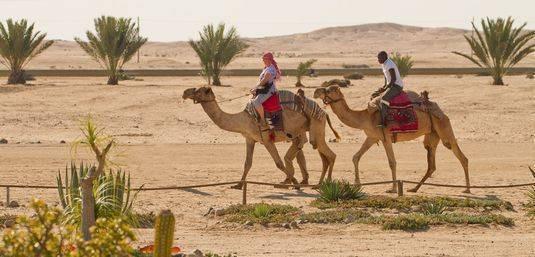 Camel-Ride.jpg