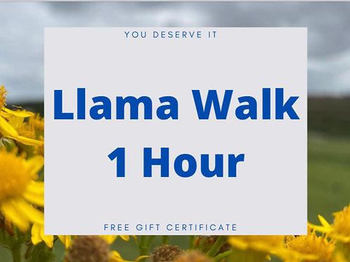 1 Hour llama walk voucher