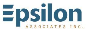 Epsilon Associates