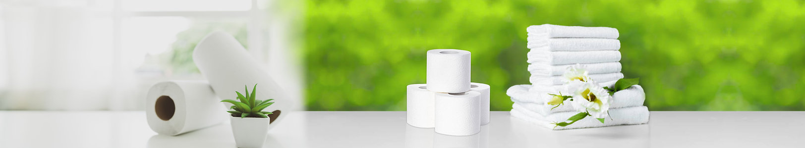 paper rolls on counter image.jpg
