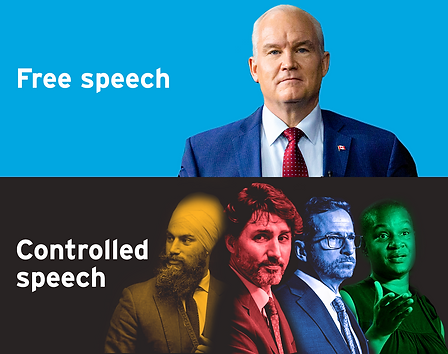 free speech graphic.png