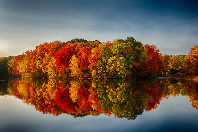 Fall Colors Reflecting in a pond.jpg