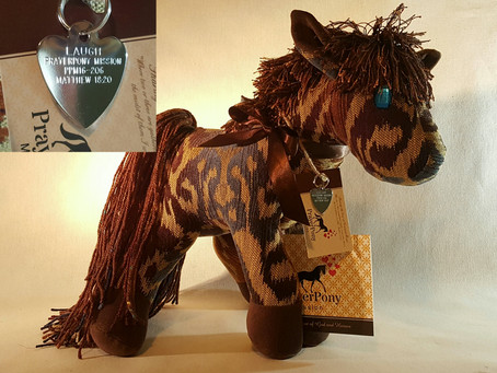 Update on the Prayer Ponies for loved ones of prisoners...
