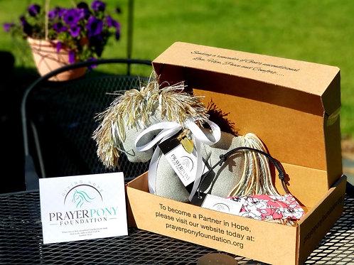 Prayer Pony with Hope Face Mask Gift Set