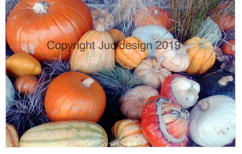 Judi's 2nd photo batch 001.jpg