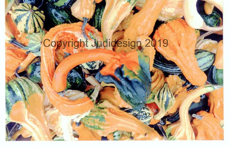 Judi's 2nd photo batch 006 Pumpkins.jpg