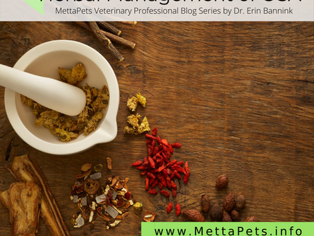 Herbal Management of Canine OSA Patients