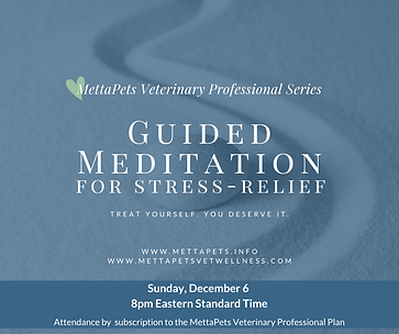 mvp series guided meditation 12-6-2020.p