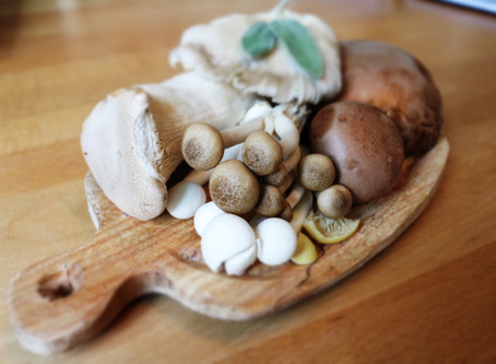 Medicinal Mushrooms: How This Superfood Improves Gut Health and Supports Healing