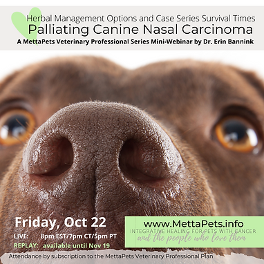 Palliating Nasal Carcinoma webinar.png