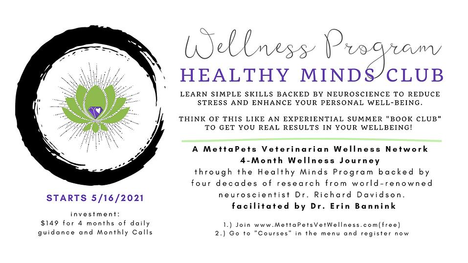 healthy minds club program banner.png
