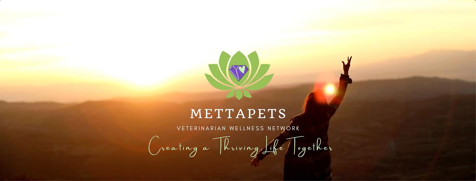 Mettapets veterinarian wellness network
