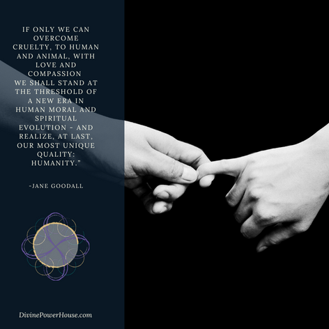 Thresholds & Hope: The unlimited potential of the Human Spirit  Newsletter Link:
