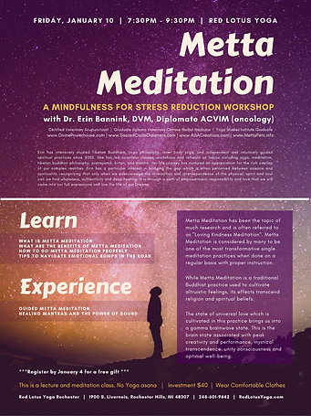 metta meditation RLY jan 10 2020.png