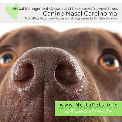 MVP Series Nasal Carcinoma and herbs.png