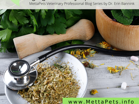Potential Role of Chinese Herbal Medicine in Managing Canine Lymphoma Patients: Liu Jun Zi Tang