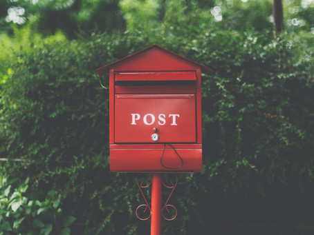 Bring Back Snail Mail