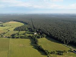 67-Forêt de Tronçais 3 (Copier).jpg