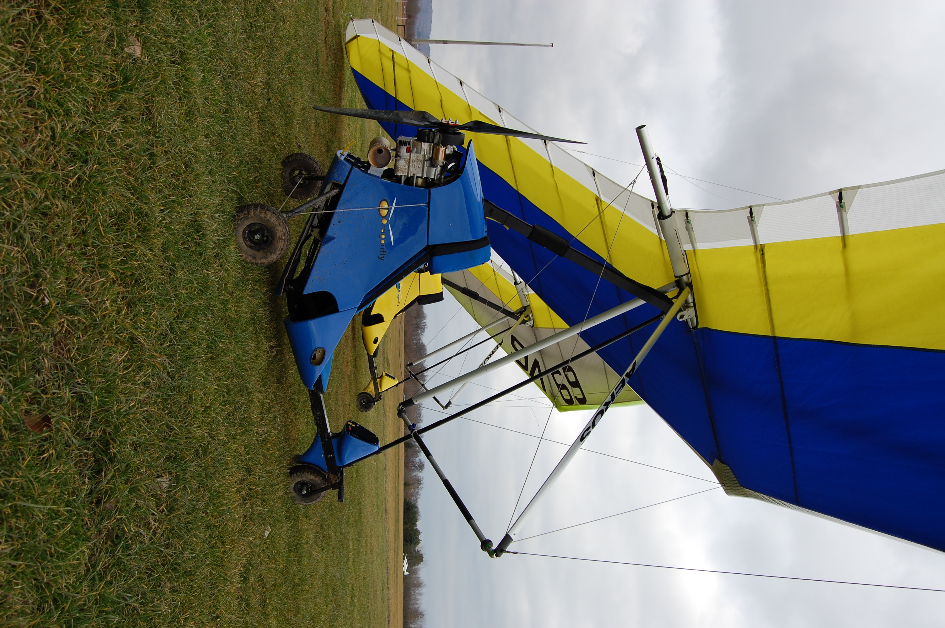 U2Dragonfly (3).JPG