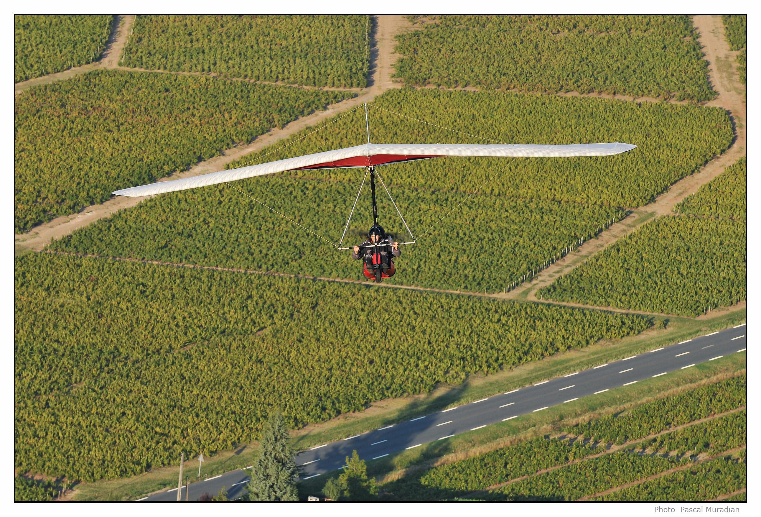 U2Dragonfly (15).jpg