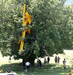 U11TémoinAccident (47).jpg