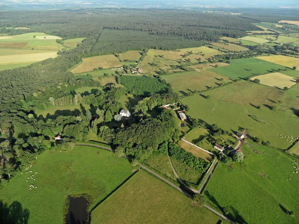 66-Forêt de Tronçais 2 (Copier).jpg