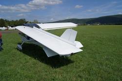 U6Fox (24).JPG