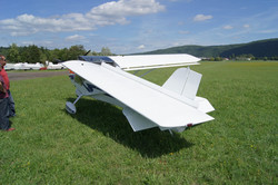 U6Fox (25).JPG