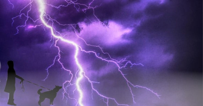 thunder1.jpg