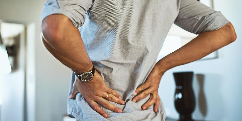 WorkShop - Como tratar 95 % das dores lombares e como vender para reabilitar, não pelo $$