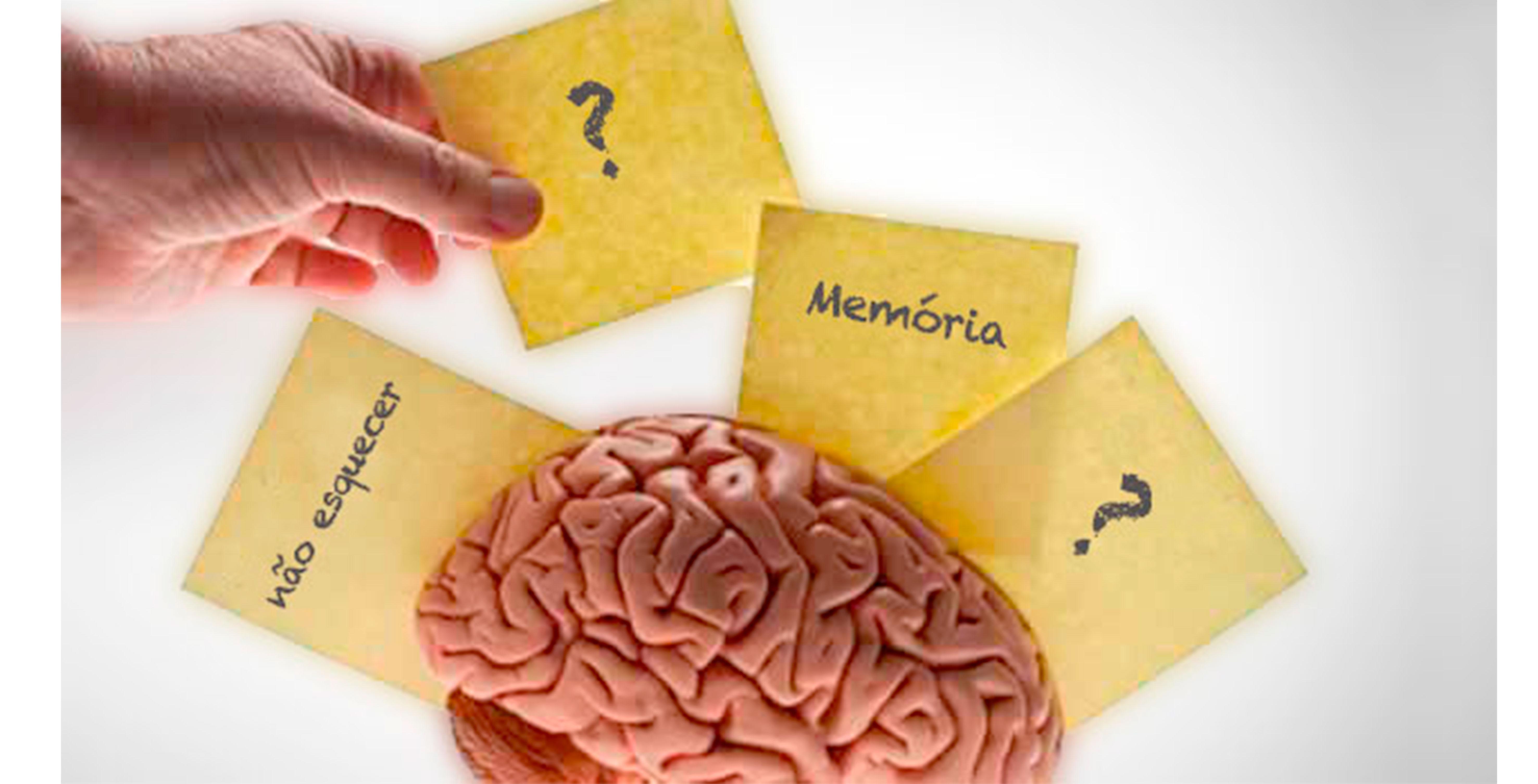 Memoria 4
