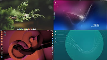 DE-collage[1].jpg