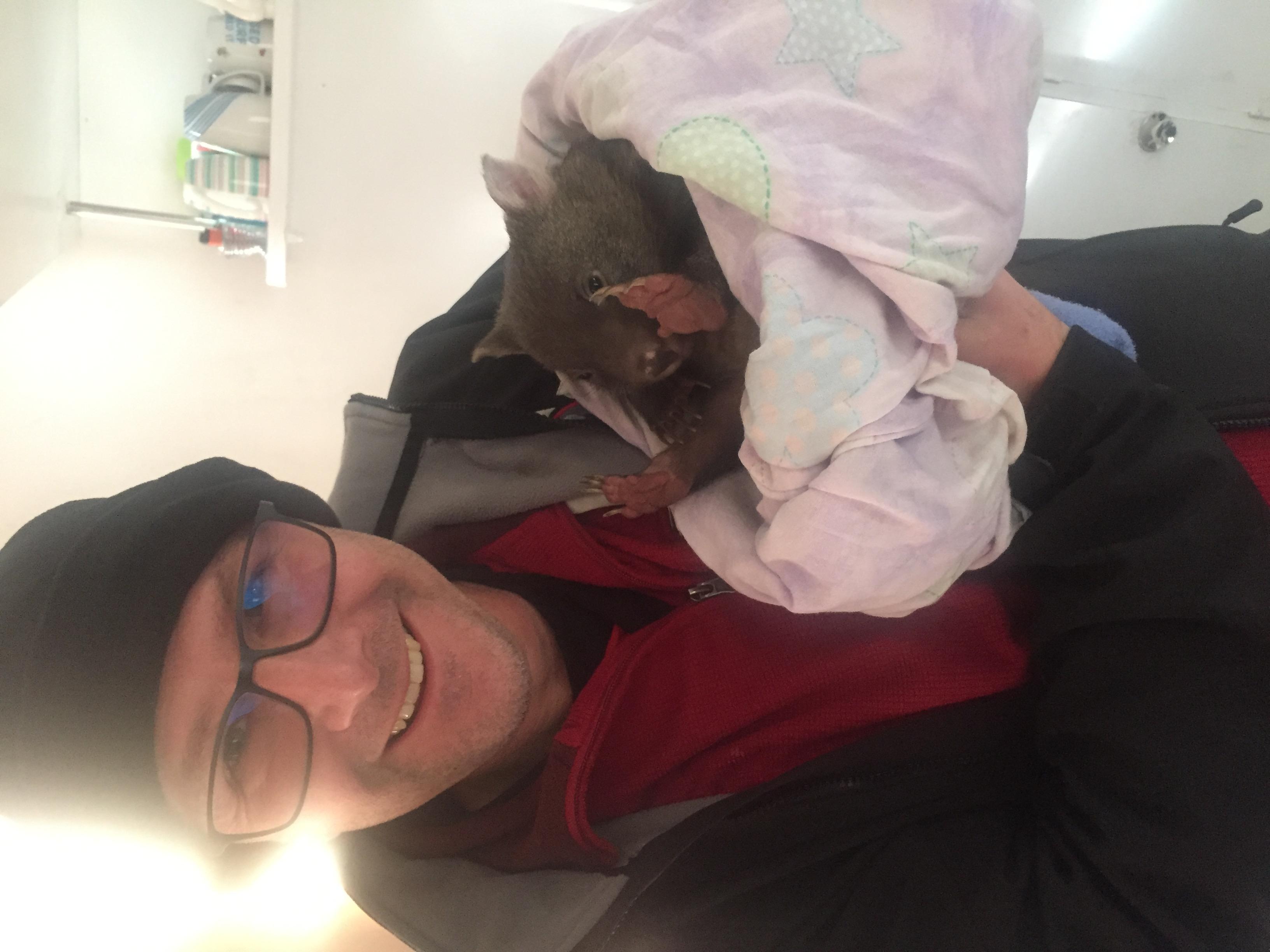 June 2017 baby wombat (43)