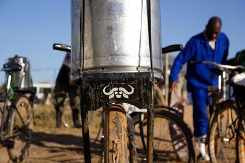 Buffalo Bicycle