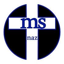 MSNAZ.jpg