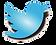 twitter-logo_edited_edited.png
