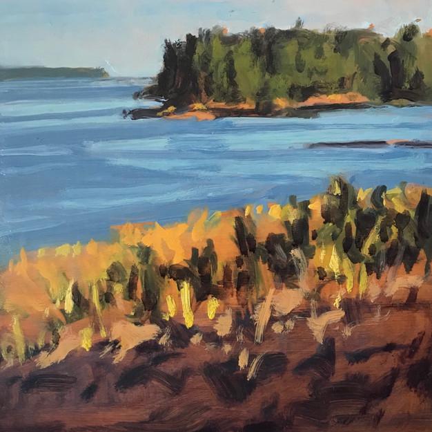 Bear Island form the South Meadow, Great Spruce Head Island