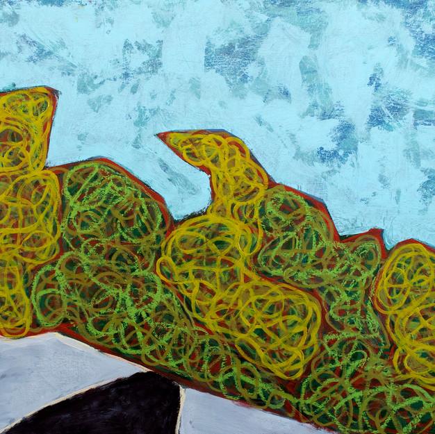 Island Geometry, Monhegan: Rockweed No. 10