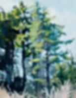 LizHoag_ShorelineTrees_24x36_ac.jpeg