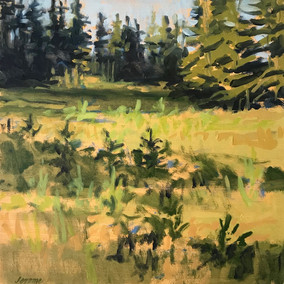 South Meadow, Great Spruce Head Island #3