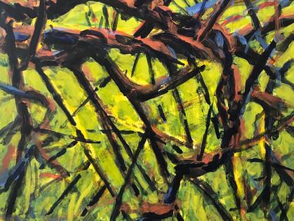 Nina Jerome:  Entangled Space