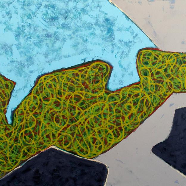 Island Geometry, Monhegan: Rockweed No. 13