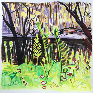 "Fern on thge Presumpscot River 14"" x 11""  Watercolor on Paper"