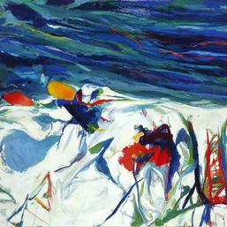Winter Storm Schoodic, 2001