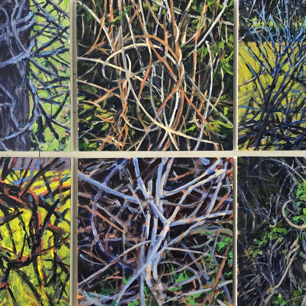 Spring Vine Sequence