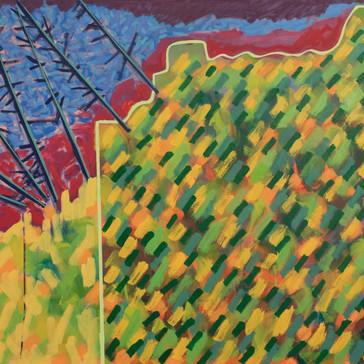 Island Geometry, Monhegan: Cliff Trail No. 2