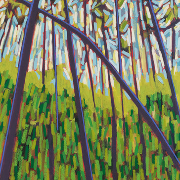 Harpswell Woods No. 4